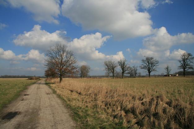 Reiherwiesen